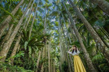東南植物楽園②